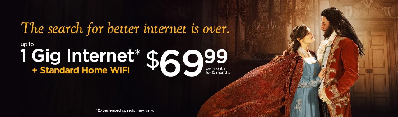 1 Gig Internet Service